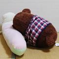 Photos: 2010_1024_204903 くまくんとチンさんお昼寝中