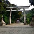 Photos: 2021_0128_163325 石清水八幡宮
