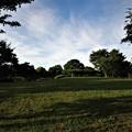 写真: 風の公園