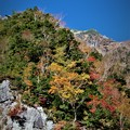 Photos: 登山道