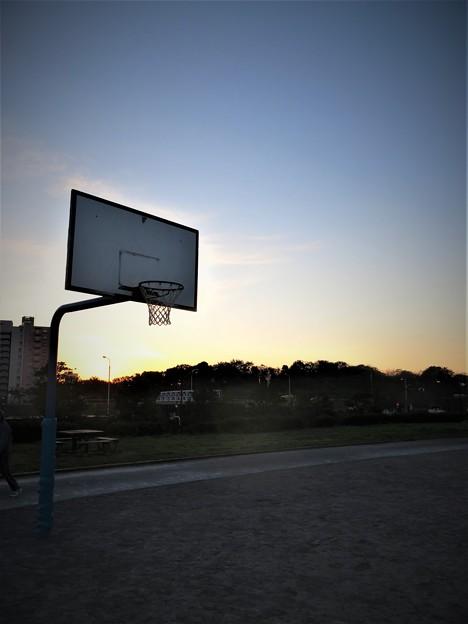 写真: 球技