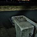 写真: 凍てつく朝
