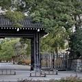 Photos: 京都御苑