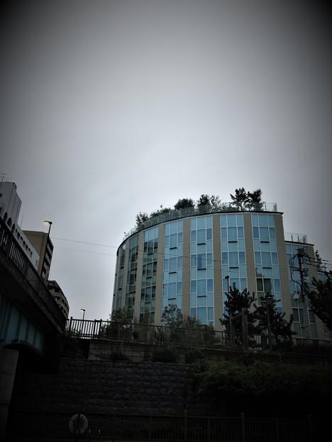 リハビリテーション病院