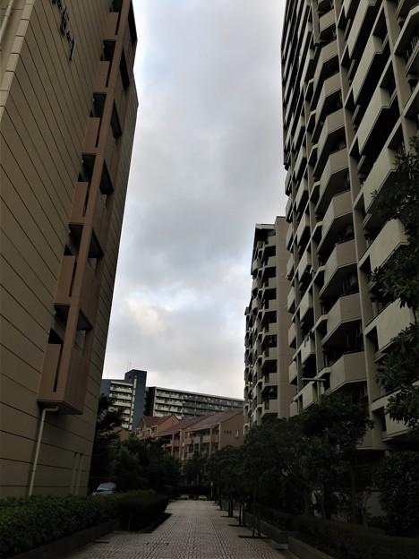 Photos: 街歩き
