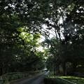 Photos: 風の公園