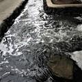 Photos: 放水