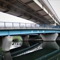Photos: 中川に