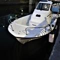 Photos: 舫い船