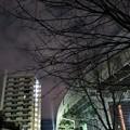 Photos: 北風