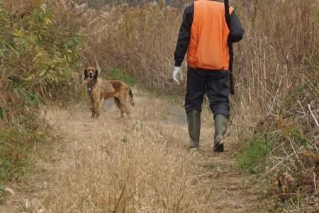猟師さんと犬