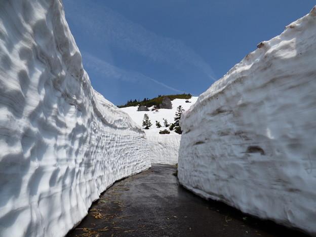 八幡平・雪の回廊