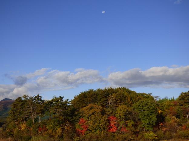 写真: 朝月夜と紅葉