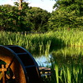 Photos: 小さな水車