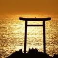 Photos: 波立弁天島