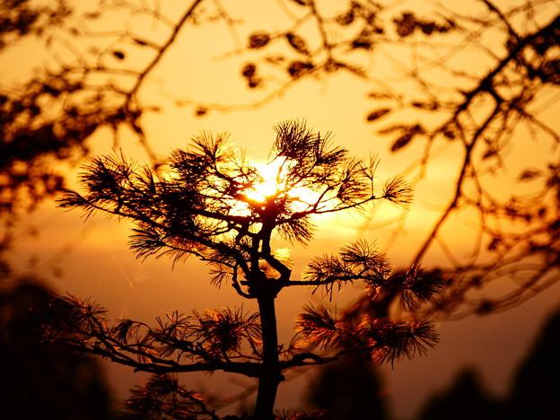 秋分の日の朝日