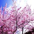 晴れた日の、 (2)