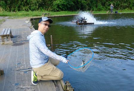 今期営業終了間際のフィッシングDoDooで友釣り^^