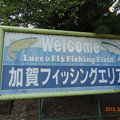 加賀フィッシングエリアが釣れる!?