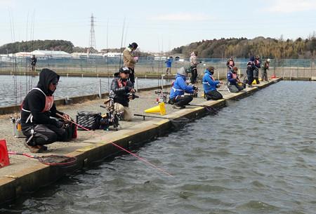 ドットコム・座間養魚場戦
