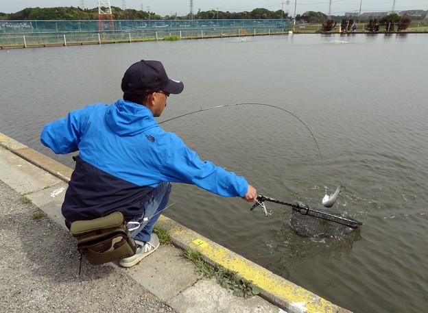 座間養魚場 第5回Zカップ最終戦 3年目にして座間王に^^