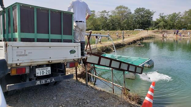 """2019 なら山沼漁場 """"初"""" オープン初日ワイワイ釣行^^"""