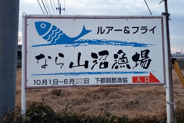 Photos: トラキンペア戦・トライアルの練習