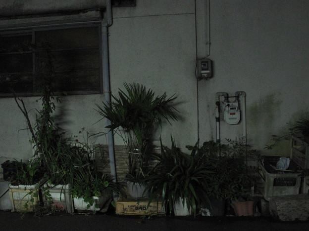 夜のメーター#2