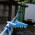 写真: ロープ