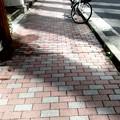 写真: 歩道にて
