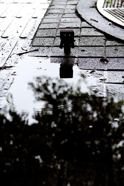 雨上がり #2