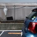 写真: 駐車場にて