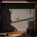 Photos: 朝の電話ボックス