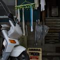 Photos: 蕎麦屋裏