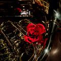 Photos: 薔薇とホルン