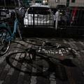 Photos: 駐輪場の影と傘
