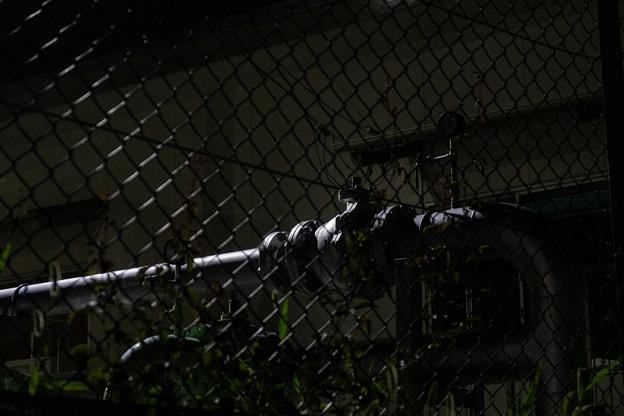フェンス越しの配管