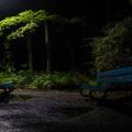 Photos: 向かい合わせのベンチ