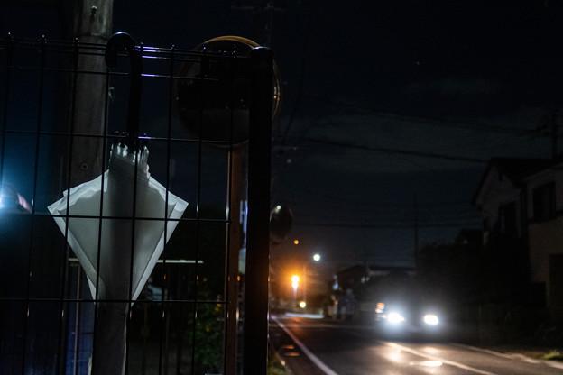 Photos: 道端にかかる傘