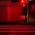 Photos: 赤く染まる