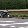 Photos: そば畑とマイバイク