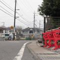 Photos: さんチーバ