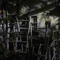 Photos: ハシゴ達の夜
