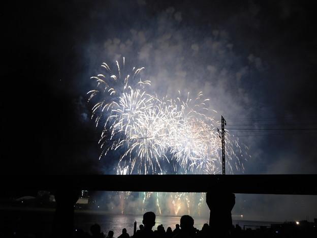 20180812(新潟まつり花火大会5)