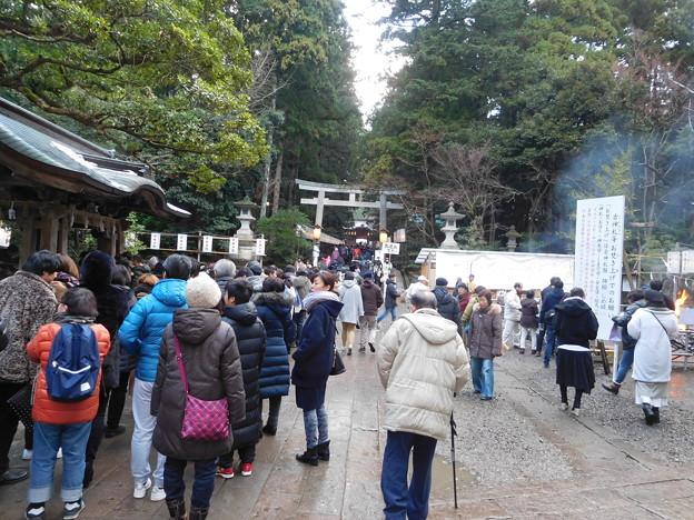 20190102(弥彦神社1)