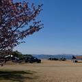 Photos: 20190504(天神浜オートキャンプ場3)