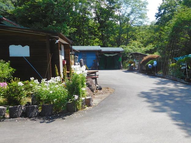 20190817(暮坂高原オートキャンプ場13)