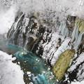 写真: 白ひげの滝