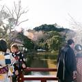 写真: 八藩宮的春櫻