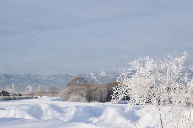 壮大な大雪原